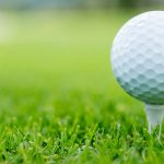 Boys Golf DI OHSAA Sectional Results