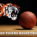 Lady Tigers to Face West Branch in Sectional Finals