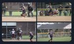 Softball battles Boardman, but Spartans too much