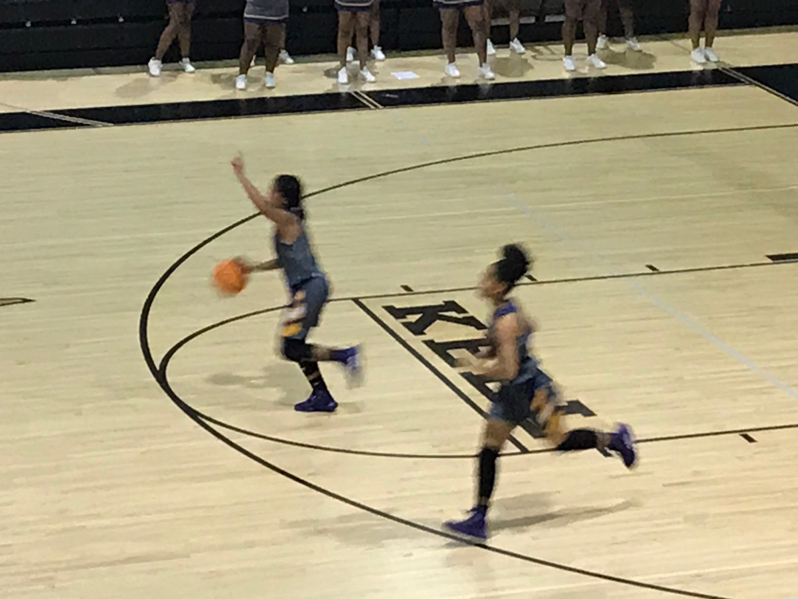 Lady Hounds Fall in Elite 8