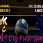 Lady Hornet Volleyball To Host Annual Dig Pink Night Oct 6th