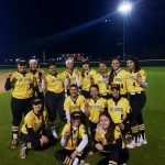 All District Awards Roll In For Hornet Softball