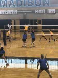 Photos from 2019 Volleyball Scrimmages