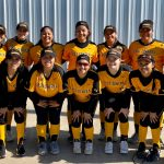 Lady Hornet Softball Update