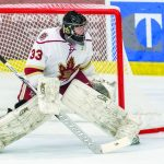 Boys Hockey: Walsh's size arms defense