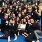 Gymnastics: Crimson win Section; Headed to State