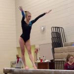 Gymnastics: Crimson set for State