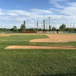 Baseball: Crimson win 5-1, advance to section final