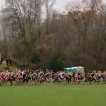 Cross Country State Results: Iverson finishes 32nd; Girls in 16th