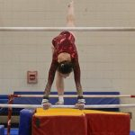 Gymnastics: Crimson defeat Coon Rapids in NWSC meet (VIDEO)
