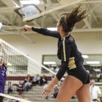Volleyball: Crimson spikers are young but talented