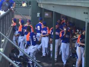 Baseball at Flour Field against Travelers Rest