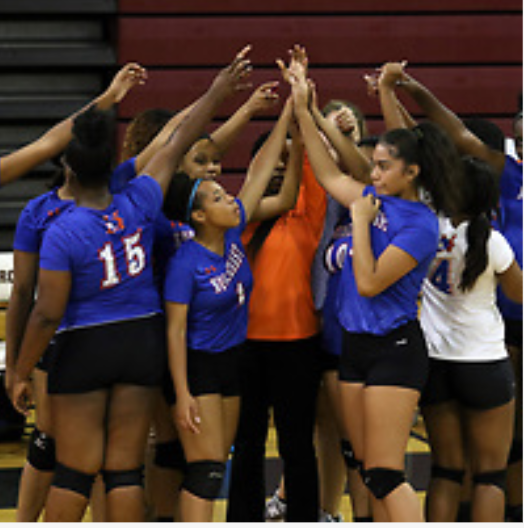 Volleyball Tickets are on Sale Now Online