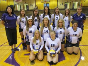 EHS Volleyball Team Photo 2013