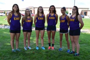 2015 Girls Cross Country Team
