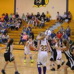 Lady Musketeers Defeat Hornets