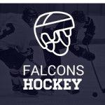 Farmington High School Boys Varsity Hockey falls to Rochester High School 0-7