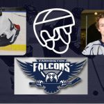 Falcons Hockey – Majoros Featured in HometownLife