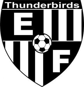 New Soccer Logo