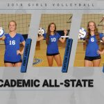 Volleyball Academic All State Honors