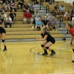 Volleyball sweeps Philo