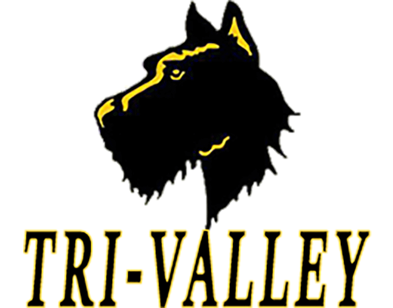 Tri-Valley battles host Dover on Oct. 31 for D-II District volleyball title; visiting Lady Dawgs down top seed Beaver Local in epic 5-set thriller in district semi-final