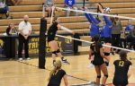 Lady Dawg volleyball earns 2nd straight MVL win with Maysville victory