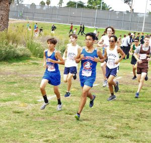Check Out Cross Country Latest Race!