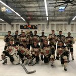 DHS Hockey Team headed to playoffs