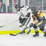 Trib HSSN- Boys Hockey Dally and Rosko chosen for All Star team!