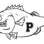 Bass Fishing Team Gets Tournament Season Underway