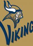Vikings lose to Riverside