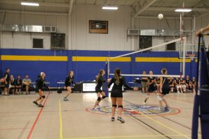 Volleyball Play Day 2015