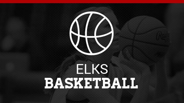 Bruce Lowrie Girls Varsity Basketball Tournament