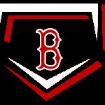 BHS Baseball Logo