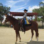 Amanda Dundas has Great Showing at Los Angeles Equestrian Center