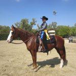 Equestrian Results