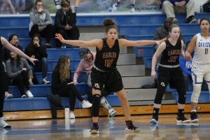 Photos: Varsity Girls Basketball at Hilliard Davidson (District Tournament) 2/22/2019