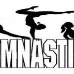 Gymnastics Questionnaire