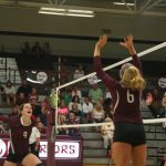 Warrior Volleyball Sweeps Daleville