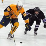 Saline Ice Hockey Try-outs