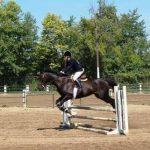 Equestrian Team Meeting