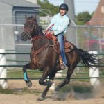 Equestrian Back in Action!