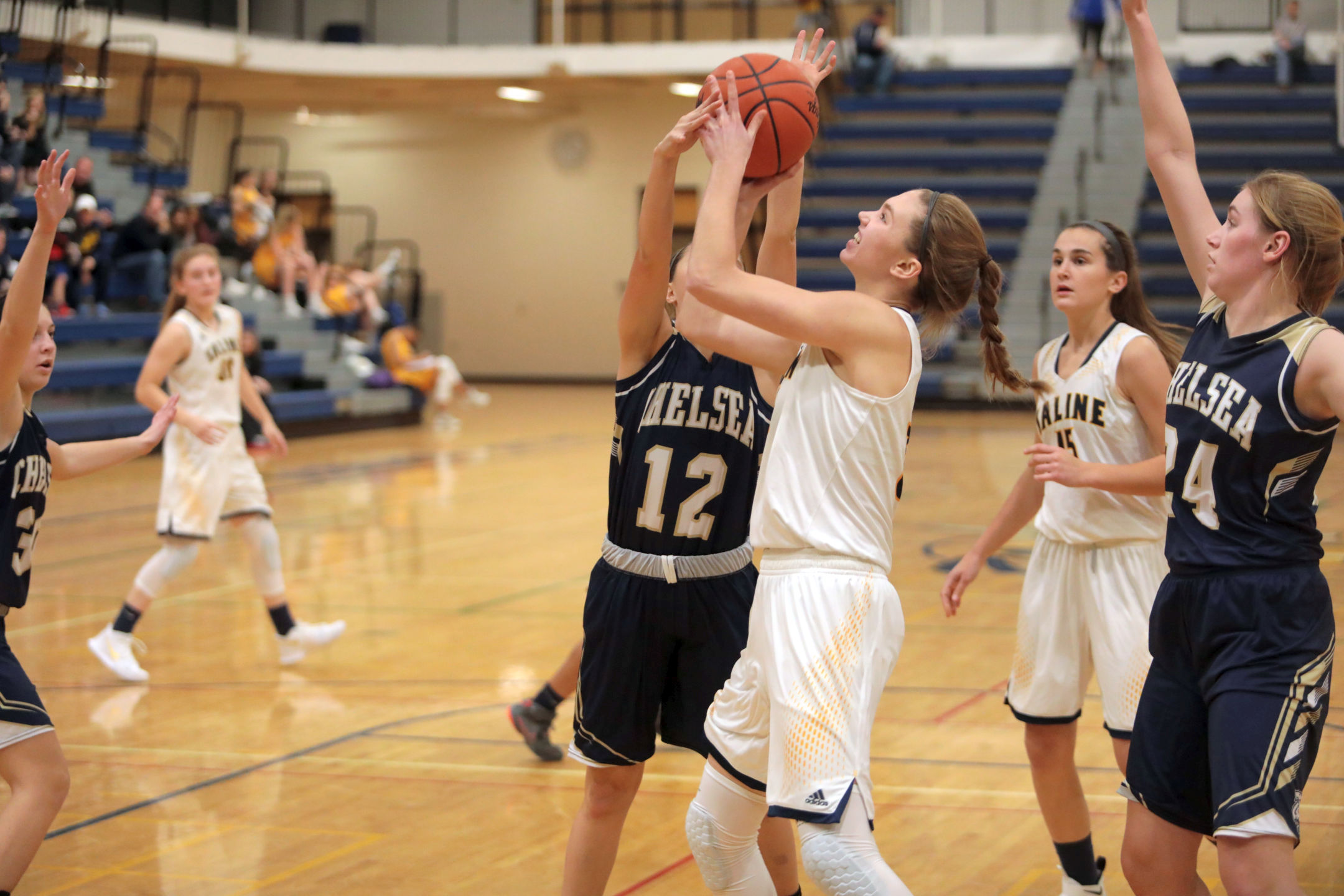 The Saline Post: Stemmer, Bauer Lead Saline to Victory Over Ypsilanti