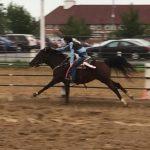 9/9/2018 - Equestrian