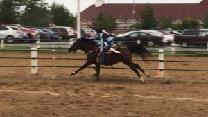 9/9/2018 – Equestrian