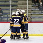 Saline Hornets cruises to a 9-1 victory over rival Pioneer