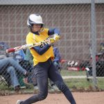 @TheSalinePost: Hornets Take 3 of 4 at Home Invitational