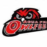 Agua Fria High School Girls Freshman Volleyball beat Estrella Foothills High School 2-0