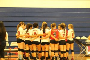 Lady JV Volleyball 2015